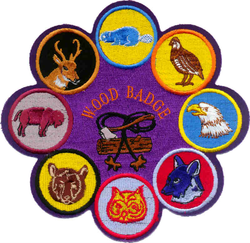 Wood Badge Patrols