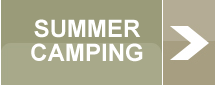 Summer Camping Button