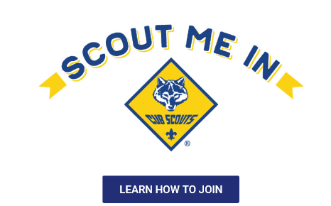 Scout Me In