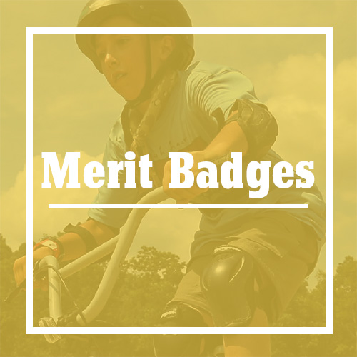 Merit Badges