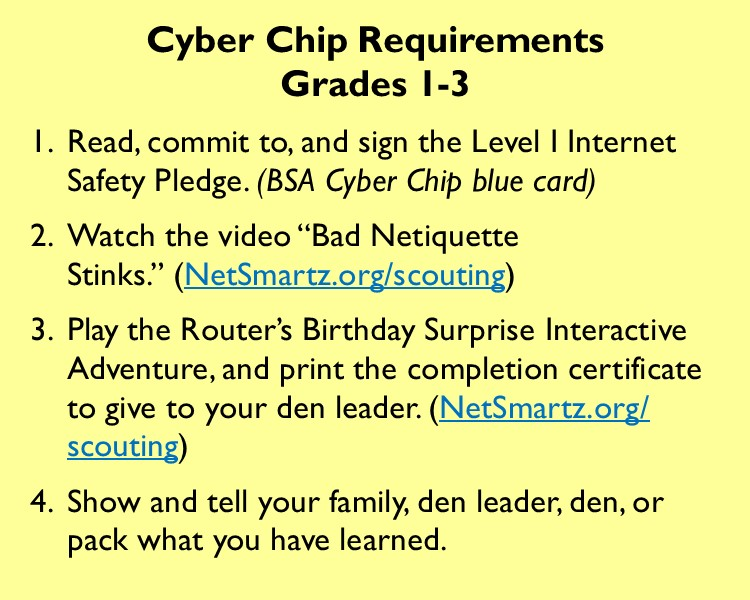 graphic regarding Bsa Cyber Chip Green Card Printable called Retaining Youth Protected On the internet with the Cyber Chip Award Effortless