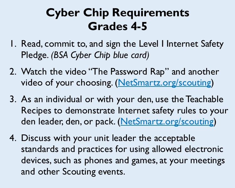 image relating to Bsa Cyber Chip Green Card Printable known as Trying to keep Youth Protected On the internet with the Cyber Chip Award Straightforward